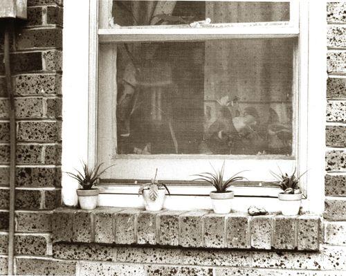 Sepia-windowsill
