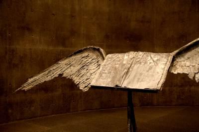 Wings02